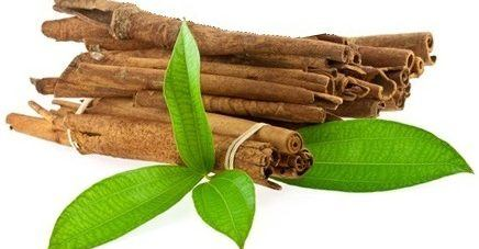 Vigon's cinnamon leaf oil for use in spicy, deep, woody or clove odor applications